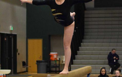 Gymnastics reflects on a difficult season