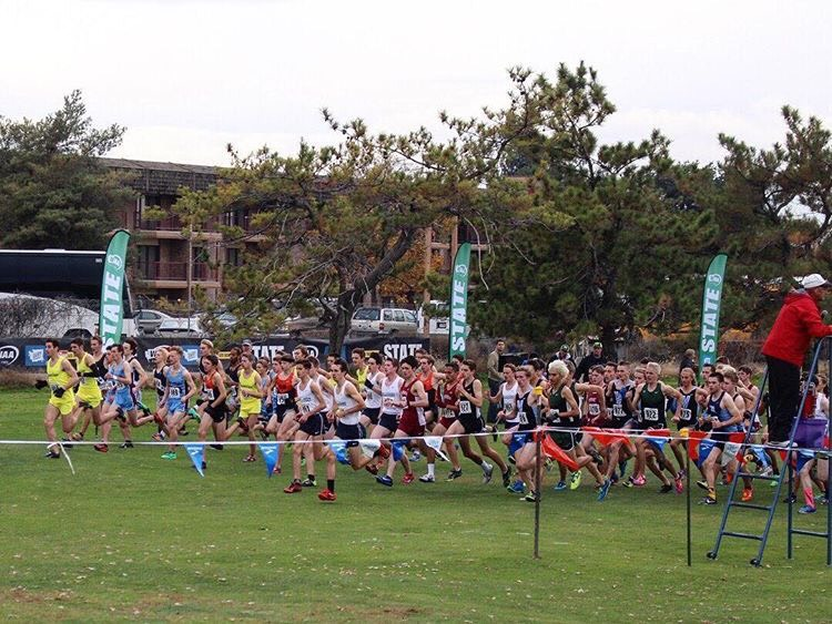 The boys team takes off from the starting line at the 2017 cross country state meet in Pasco, WA.