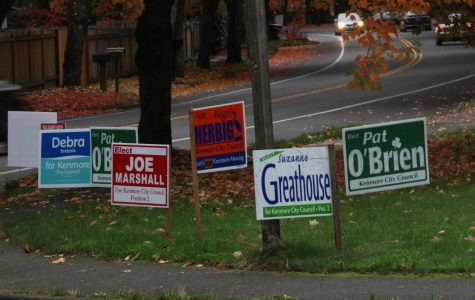 Election yard signs on 60th Ave NE display local candidates' names, positions and taglines. While many politicians also utilize door-to-door tactics and the media, most use these traditional election signs near busy streets and intersections to raise awareness for their campaigns.