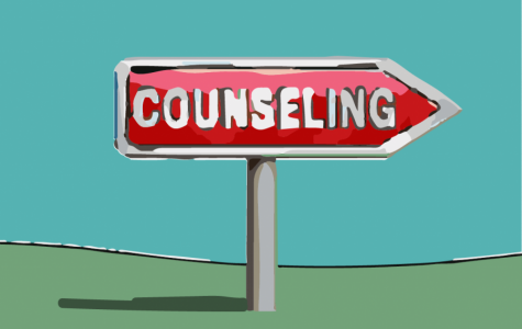 Editorial: The importance of counselors