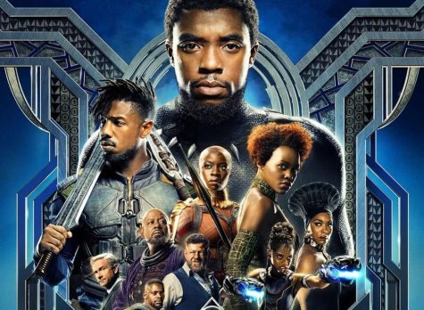 Black Panther in review