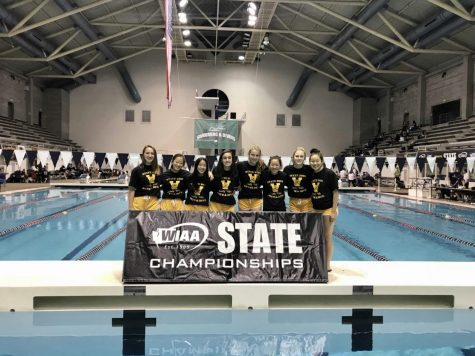 Girls swim and dive returns to state championships