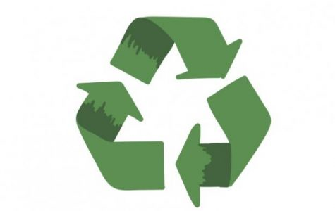 Sustainable products and brands