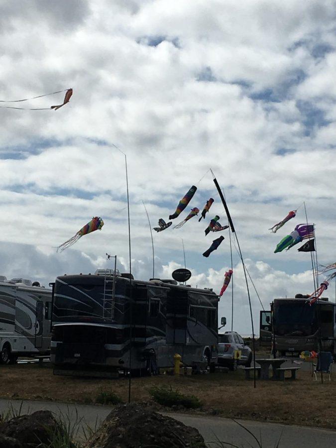 June-+Kites