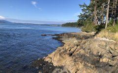Coast from Anacortes. Photo by Hope Rasa.