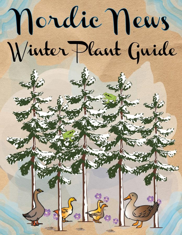 Nordic's Sofia Leotta and Kath Shelden discuss the many habitats, traits, and fun facts about numerous plant and animal species in Western Washington, ranging from the Douglas Fir Tee to the Pacific Tree Frog. Art by Sofia Leotta and Kath Shelden.